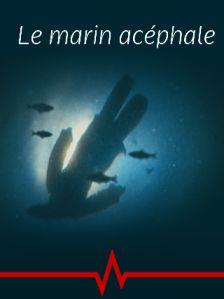 Le Marin Acéphale